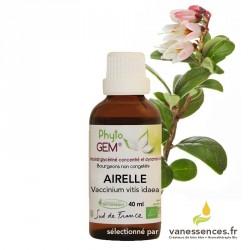 Bourgeons d'Airelle bio - Macérat glycériné de vaccinium vitis idaea