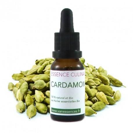 Cardamome - Essence culinaire Bio - Concentré d'arôme 100% bio et  naturel à l'huile essentielle de Cardamome