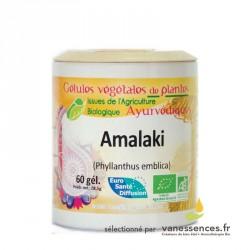 Amalaki bio Fruit d'Amla en poudre en gélules. Produit ayurvédique