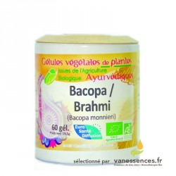 Bacopa monnieri bio. Brahmi Gélules de poudre de plante ayurvédique
