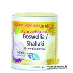 Bowellia Serrata Shallaki Gélules de 400mg, 65% d'acides boswelliques