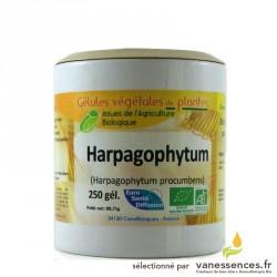 Harpagophytum procumbens - 250 Gélules de poudre de plante bio