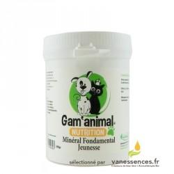 Complément alimentaire pour chien sportif et chiots 100% naturel