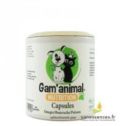 Capsules ONAGRE / BOURRACHE / POISSON - Complément alimentaire chiens chats