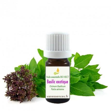 Huile essentielle Basilic exotique ou tropical  Qualité BIO HECT.