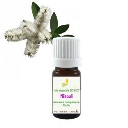 Niaouli - Melaleuca quinquenervia - Huile essentielle BIO HECT