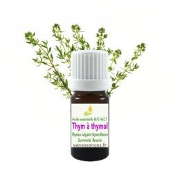 Huile essentielle de Thym à thymol Bio HECT Thymus vulgaris thymoliferum