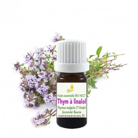 Huile essentielle de Thym à linalol Bio HECT Thymus vulgaris