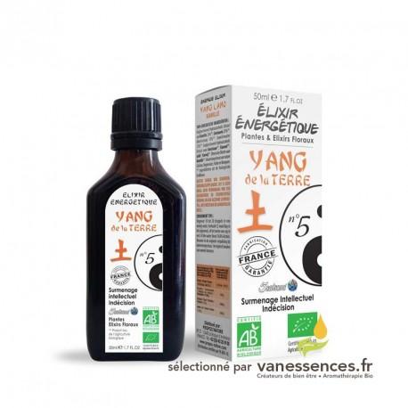 Elixir énergétique Yang de la Terre n°5 - Médecine traditionnelle chinoise