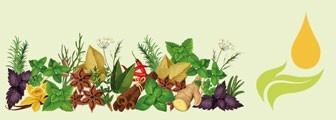 ESSENCES CULINAIRES BIO : huiles essentielles pour la cuisine