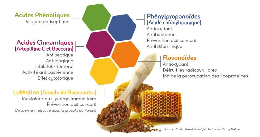 Apithérapie, les bienfaits de la propolis verte bio