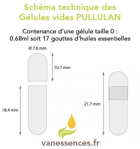 Chema technique d'une gélule pullulan