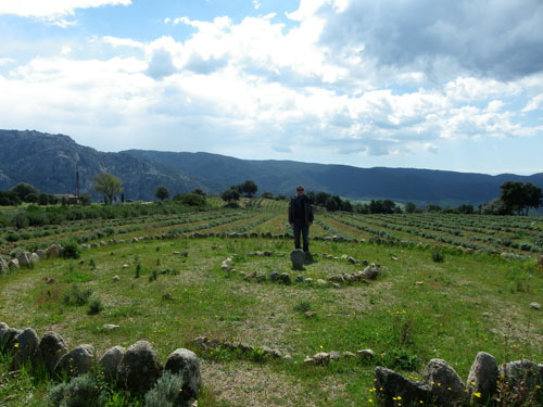 culture d'huile essentielle en Corse